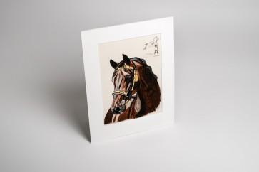 Passepartout Bay Lipizzan Stallion